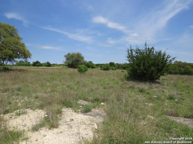 LOT 1668 George Dolson, Blanco, TX 78606 (MLS #1303161) :: The Castillo Group