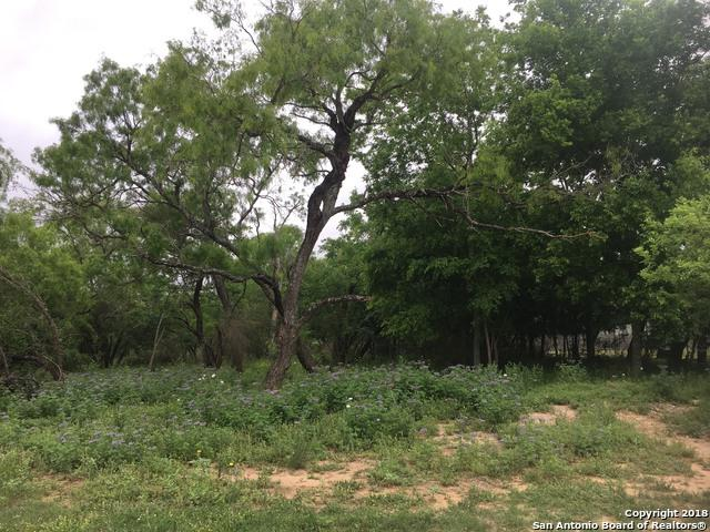 LOT 6 Bluebonnet Ave, Devine, TX 78016 (MLS #1303174) :: Alexis Weigand Real Estate Group