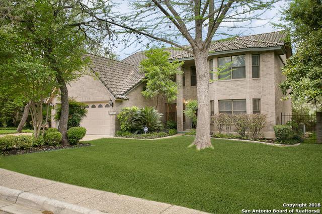 13111 Creek Briar, San Antonio, TX 78230 (MLS #1303400) :: The Castillo Group