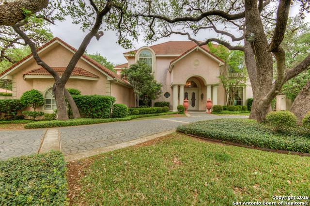 709 Sonterra Blvd, San Antonio, TX 78258 (MLS #1303521) :: The Castillo Group