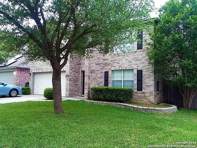 4123 Knollpass, San Antonio, TX 78247 (MLS #1303908) :: Magnolia Realty