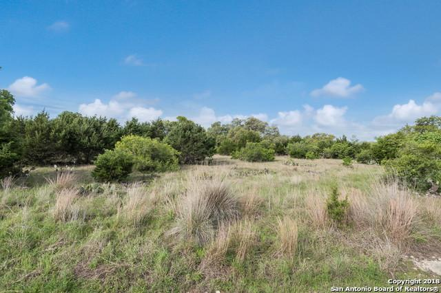 280 Puzzle Pass, Spring Branch, TX 78070 (MLS #1303952) :: The Castillo Group