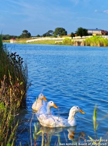 336 Abrego Lake Dr, Floresville, TX 78114 (MLS #1304044) :: Exquisite Properties, LLC
