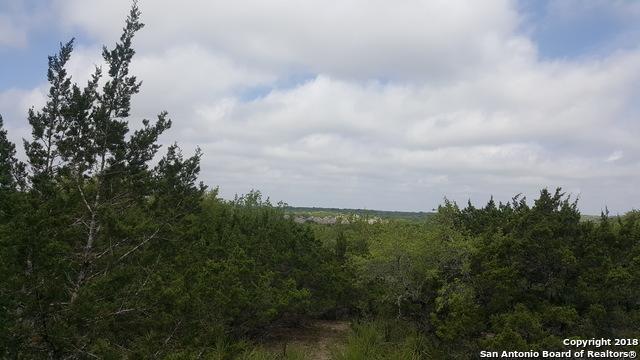000 High Timber Pass, San Antonio, TX 78260 (MLS #1304677) :: The Castillo Group