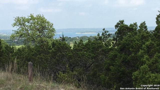 8 Damar Dr., Canyon Lake, TX 78133 (MLS #1304714) :: Erin Caraway Group