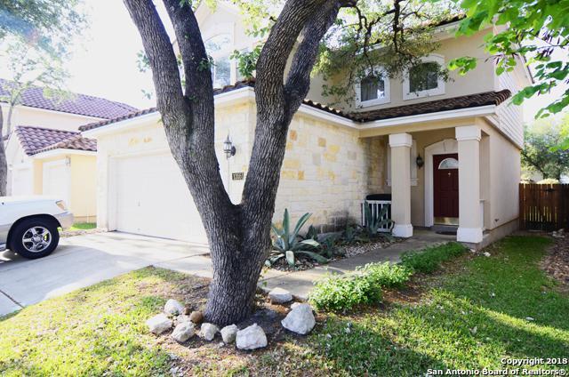 1355 Pinnacle Falls, San Antonio, TX 78260 (MLS #1304917) :: Magnolia Realty