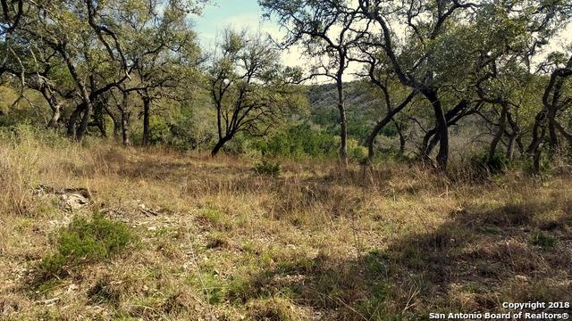 611 Brittany, Canyon Lake, TX 78133 (MLS #1304974) :: Erin Caraway Group