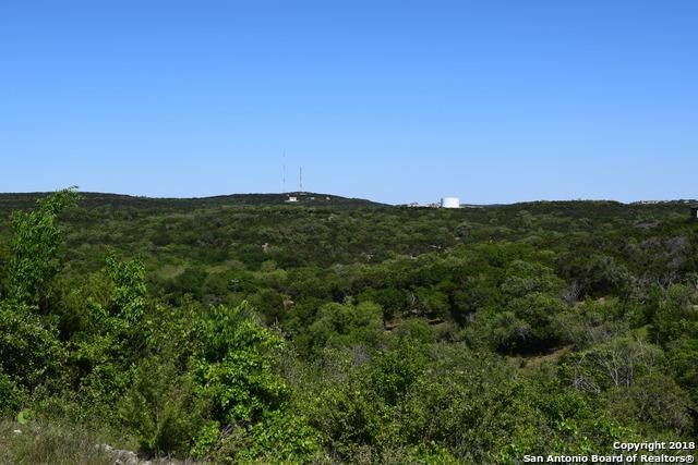 19934 Terra Canyon, San Antonio, TX 78255 (MLS #1305047) :: Magnolia Realty