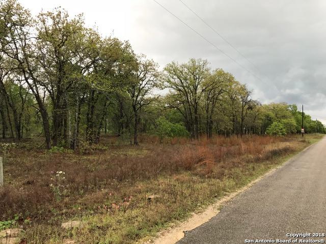 204 Hickory Run, La Vernia, TX 78121 (MLS #1305092) :: Exquisite Properties, LLC