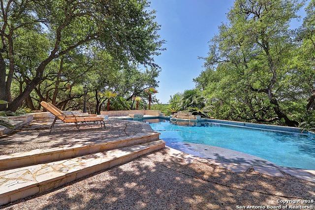 25838 Whata View, San Antonio, TX 78260 (MLS #1305263) :: The Castillo Group