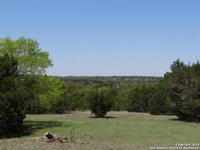 9 Schumann Rd., Stonewall, TX 78671 (MLS #1305457) :: Ultimate Real Estate Services
