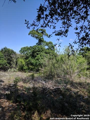258 Wilderness Creek, Canyon Lake, TX 78133 (MLS #1305644) :: Magnolia Realty