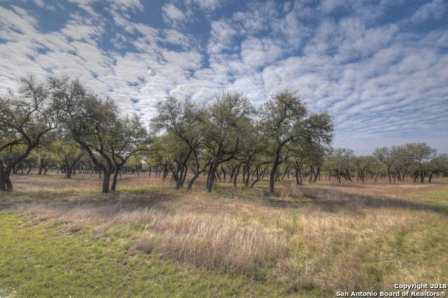 0 Landing Lane, Blanco, TX 78606 (MLS #1305702) :: Alexis Weigand Real Estate Group