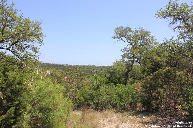 17518 Rancho Diana, San Antonio, TX 78255 (MLS #1305704) :: Erin Caraway Group