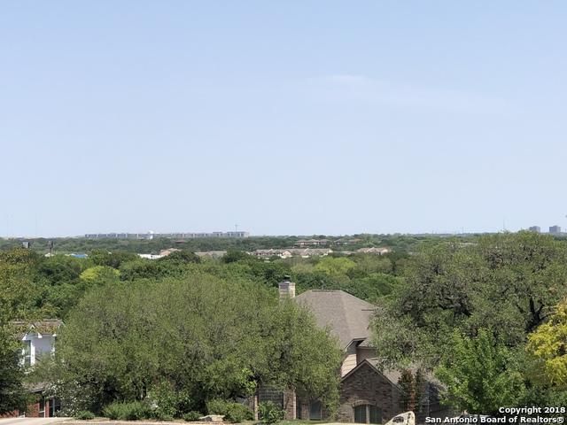 9915 Alms Park Dr, San Antonio, TX 78250 (MLS #1306020) :: Ultimate Real Estate Services