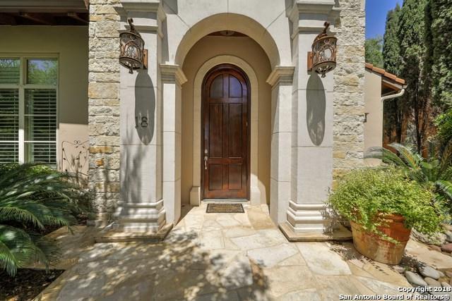 18 Winthrop Downs, San Antonio, TX 78257 (MLS #1306168) :: The Castillo Group