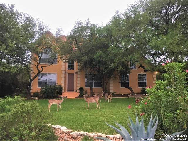 510 E Vista Ridge, San Antonio, TX 78260 (MLS #1306176) :: The Castillo Group
