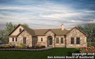 249 High Dr, Spring Branch, TX 78070 (MLS #1306352) :: The Castillo Group