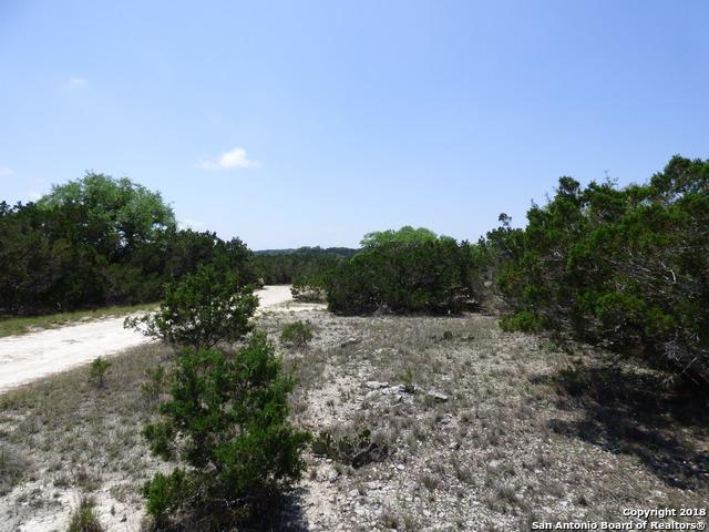 1424 Boxwood Ln, Spring Branch, TX 78070 (MLS #1306505) :: The Castillo Group