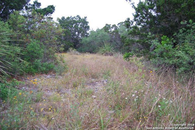 LOT 196 County Road 2744, Mico, TX 78056 (MLS #1306565) :: Magnolia Realty