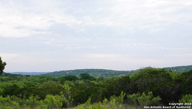 206 Arroyo Way, Canyon Lake, TX 78133 (MLS #1306632) :: Erin Caraway Group