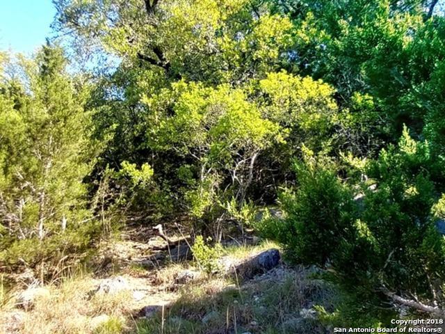 119 Sawgrass, Spring Branch, TX 78070 (MLS #1306657) :: Erin Caraway Group