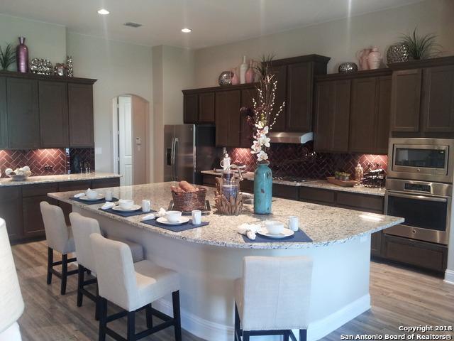 8607 Gelvani Vina, Boerne, TX 78015 (MLS #1306701) :: Carolina Garcia Real Estate Group