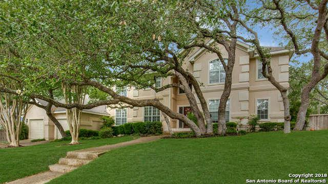 17122 Fawn Brook Dr, San Antonio, TX 78248 (MLS #1306825) :: Alexis Weigand Real Estate Group