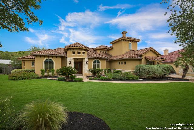 25318 Wentworth Way, San Antonio, TX 78260 (MLS #1306965) :: The Castillo Group