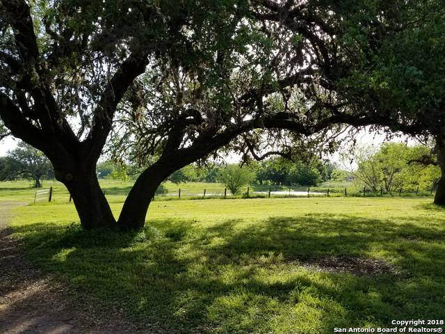 8540 E Fm 1518 N, Schertz, TX 78154 (MLS #1306971) :: Tami Price Properties Group