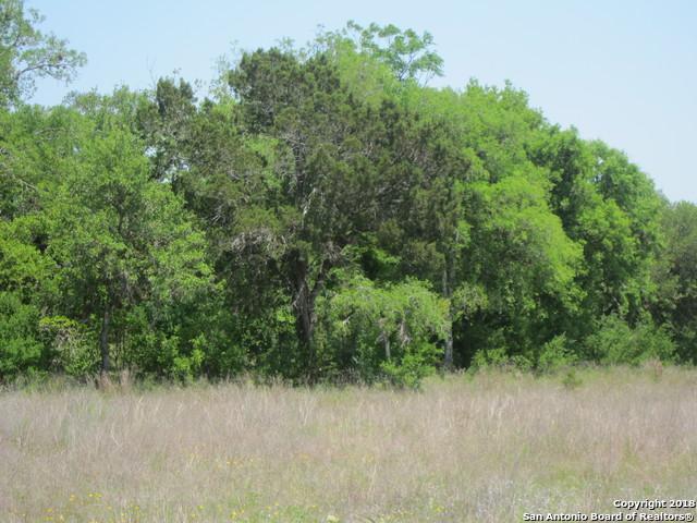 N/A Cielo Rio Dr., Pipe Creek, TX 78063 (MLS #1306994) :: Magnolia Realty