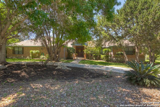 384 Hunters Creek Dr, New Braunfels, TX 78132 (MLS #1307021) :: The Castillo Group