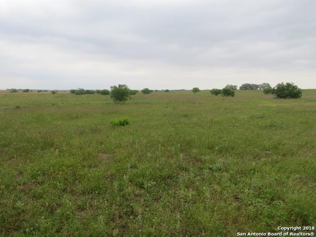 000 Fm 536, Pleasanton, TX 78064 (MLS #1307408) :: Tami Price Properties Group