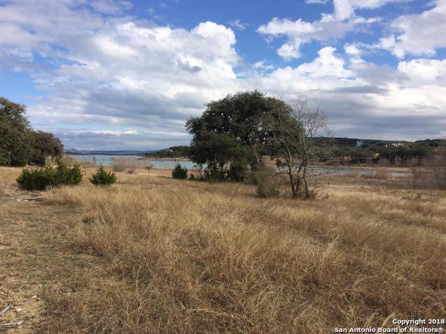 154 Double Tree Ln, Canyon Lake, TX 78133 (MLS #1307872) :: Magnolia Realty
