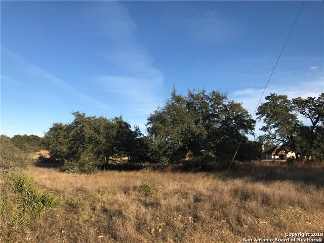 112 N Junius Peak, Blanco, TX 78606 (MLS #1307955) :: Tami Price Properties Group