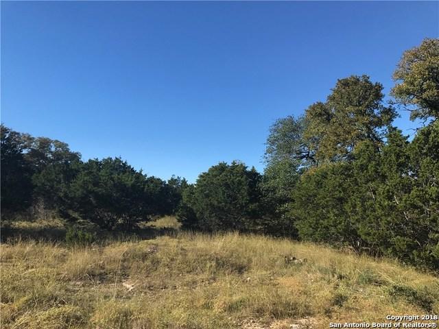 105 Dan Grady, Blanco, TX 78606 (MLS #1307975) :: Tami Price Properties Group