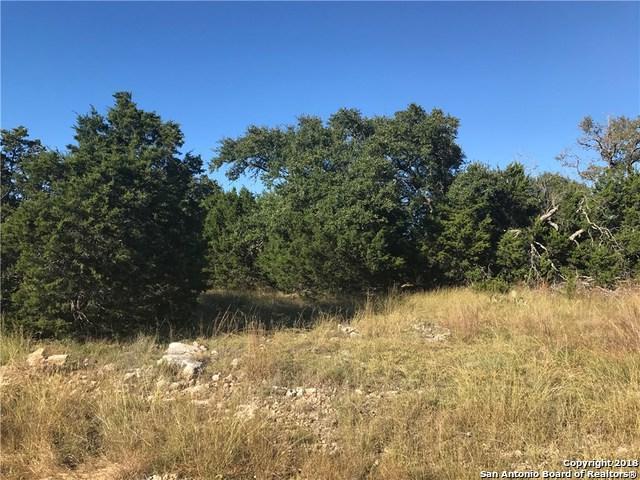 533 S Calvin Barrett, Blanco, TX 78606 (MLS #1307977) :: Tami Price Properties Group