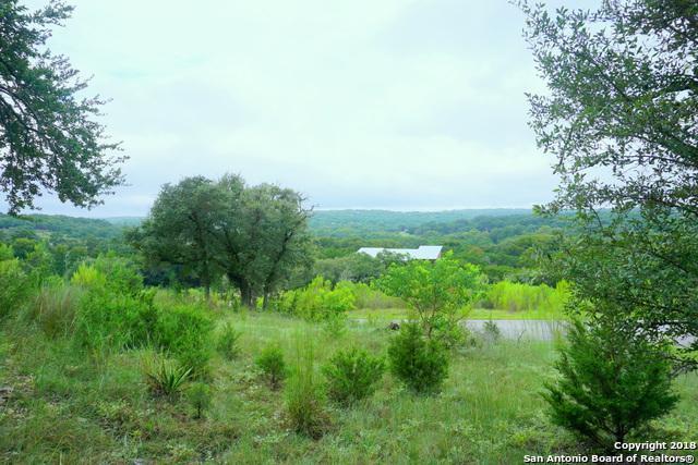 2215 Sierra Madre, Canyon Lake, TX 78133 (MLS #1308091) :: Magnolia Realty