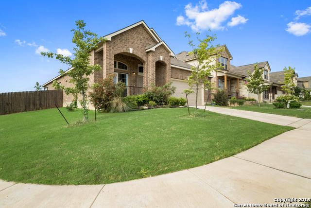 10319 Obernai Path, Schertz, TX 78154 (MLS #1308095) :: Exquisite Properties, LLC