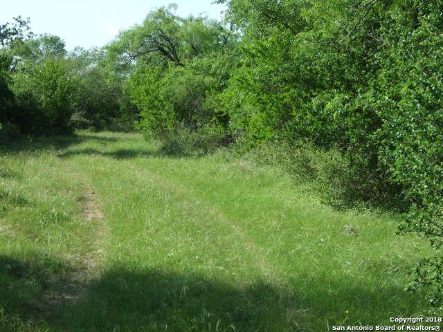 2695 County Road 651, Devine, TX 78016 (MLS #1308224) :: Tom White Group