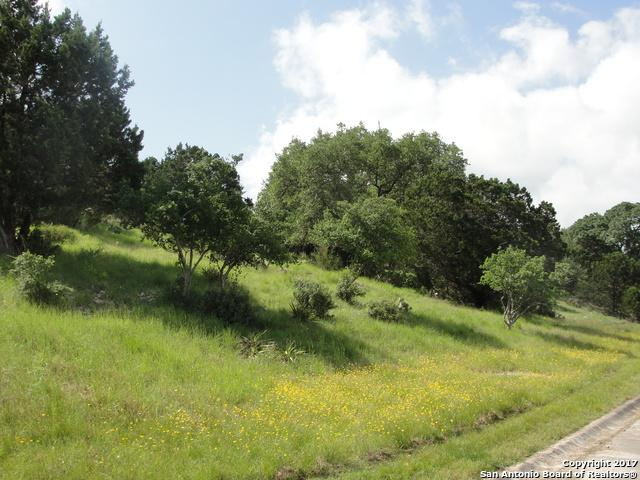 LOT1 Shores Point Dr, Canyon Lake, TX 78133 (MLS #1308340) :: Alexis Weigand Real Estate Group