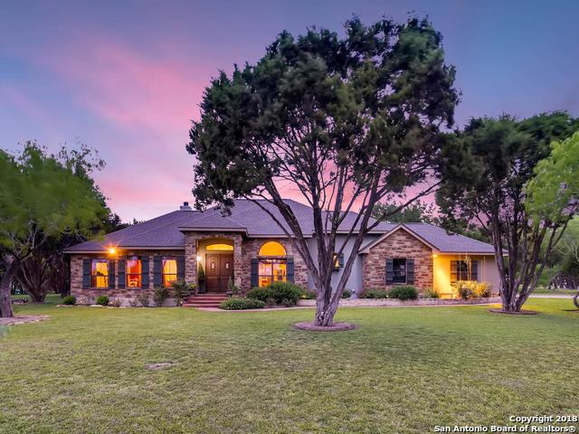 2611 Lions Den, New Braunfels, TX 78132 (MLS #1308418) :: Exquisite Properties, LLC