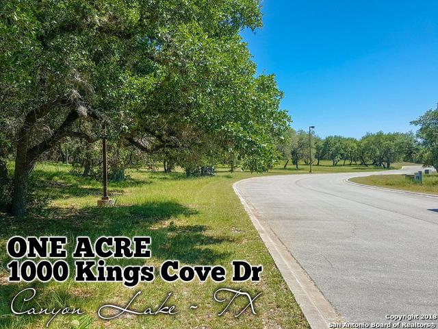 1000 Kings Cove Dr, Canyon Lake, TX 78133 (MLS #1308559) :: Alexis Weigand Real Estate Group
