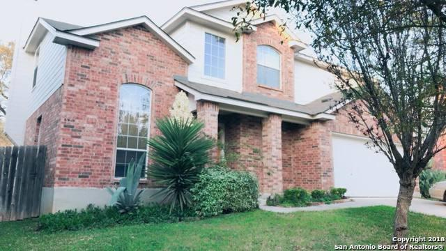 10511 Cenizo Field, Helotes, TX 78023 (MLS #1308586) :: Alexis Weigand Real Estate Group