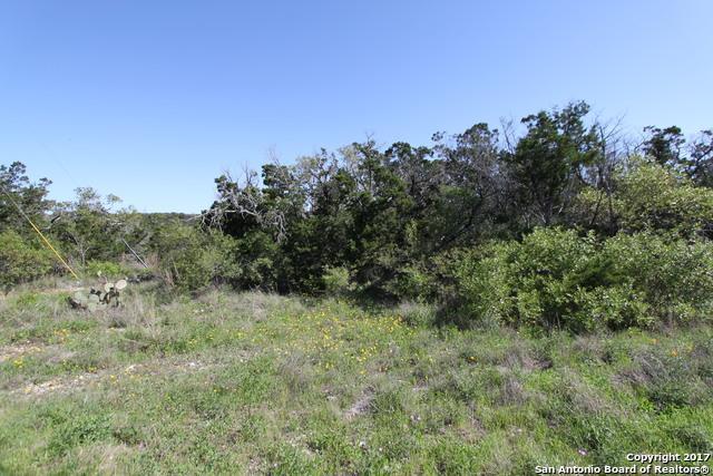 LOT 341 County Road 2744, Mico, TX 78056 (MLS #1308668) :: Magnolia Realty