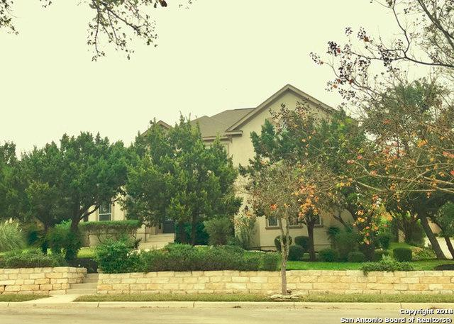 24903 Birdie Ridge, San Antonio, TX 78260 (MLS #1308721) :: Alexis Weigand Real Estate Group