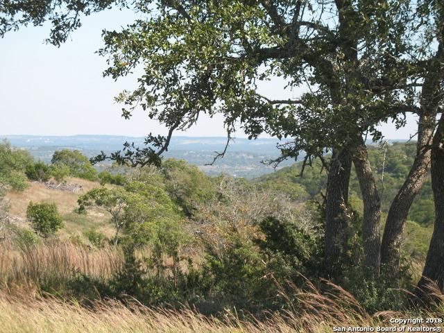 0 Brushy Ridge Trail, Blanco, TX 78606 (MLS #1308795) :: Magnolia Realty