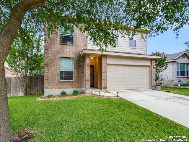 132 Phantom Creek, Cibolo, TX 78108 (MLS #1308882) :: Magnolia Realty