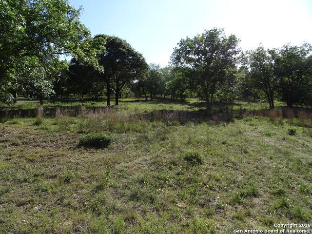 1420 Meadow Glen, Adkins, TX 78101 (MLS #1309023) :: Erin Caraway Group