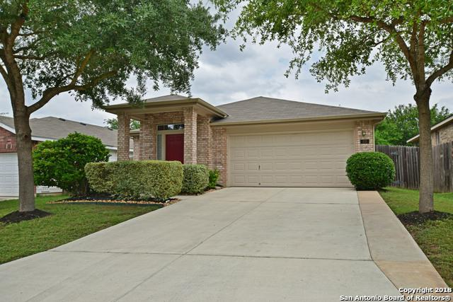 830 Celosia, San Antonio, TX 78245 (MLS #1309228) :: Magnolia Realty